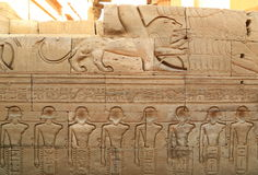 Relief in Temple of Kom Ombo. The Temple of Kom Ombo is an unusual double temple in the town of Kom Ombo in Aswan Governorate, Upper Egypt. It was constructed Royalty Free Stock Photo