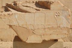 Relief in the Temple of Queen Hatshepsut Stock Images