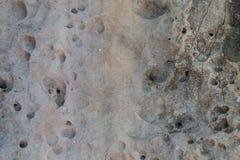 Relief volcanic stone texture Stock Photo