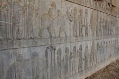 Symbolic relief on a wall of the ancient city Persepolis Stock Photography