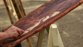 Relief on wood stock footage