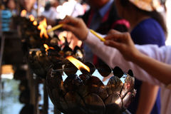 Religiös ceremoni i templet, Thailand Arkivbilder
