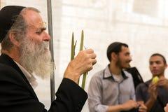 Religiöser Jude Olderly mit grauem Bart Stockbild