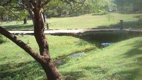 Religijna Budhism wizyta Anuradhapura Srilanka zdjęcia stock