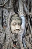 Religion de voyage de Bouddha de bouddhisme de temple d'Ayutthaya Thaïlande de ville Images libres de droits