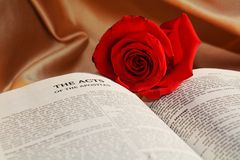 Religion and rose, symbols. A red rose on an opened Bible, suggesting the blood of Jesus, the sacrifice and the love for mankind Stock Photography