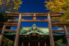 Ushijima Shrine in autumn in Tokyo. Religion and spirituality in Tokyo. Autumn view of Ushijima Shrine with beautiful yellow ginkgo leaves stock image