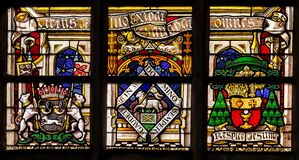 Religion stained-glass in the cathedral of Gent, Flanders, Belgium Royalty Free Stock Photos