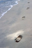 Religious?. A persons footsteps in the sand Stock Image