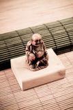 Religious Buddha Artifact. On Bamboo Rolls Stock Photography