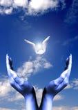 Religious concept Royalty Free Stock Photos