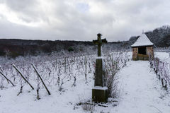 Religious cross in winter snowy vineyard Stock Images