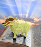 Religious fraud. Photo of a wolf in sheeps clothing standing on holy bible..depicting religious fraud. sky area ideal for text etc royalty free stock images