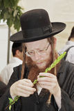 Religious Jew in black hat Royalty Free Stock Photography
