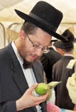 Religious Jews in black hats Royalty Free Stock Photo