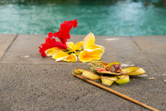Religious offerings in Bali, colored flowers next to the swimmin Stock Image