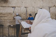 Religious orthodox praying at the Western wall and reads the Torah in Jerusalem old city. Prayer Shawl - Tallit. JERUSALEM, ISRAEL. 24 October 2018 royalty free stock image