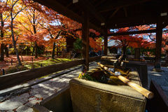 Religious purification washbasin outside a shrine during fall in Kyoto, Japan Royalty Free Stock Photos