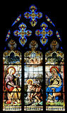 Religious stained class windows Stock Images
