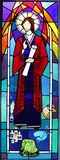 Religious stained glass window with Saint Luke, Queensland, Australia Royalty Free Stock Photos