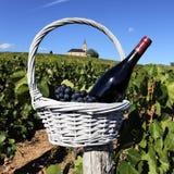 Religious wine Stock Image