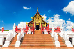 buddhismus symbol rad des lebens lizenzfreies stockbild bild 5445746. Black Bedroom Furniture Sets. Home Design Ideas