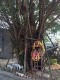 RELIKSKRIN THAILAND Arkivfoto