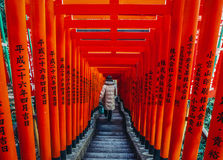 relikskrin tokyo Royaltyfria Bilder
