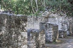 Reliquie di pietra antiche di architettura con il fondo verde degli alberi a Fotografie Stock