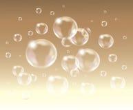 Relistic vector  Soap Bubbles. Royalty Free Stock Photos