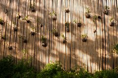 Rellenado creativo de flores en la pared de bambú foto de archivo