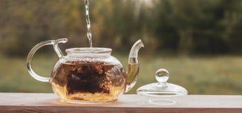 Relleno de la caldera del t? del agua hirvienda que bebe en la naturaleza del mirador foto de archivo