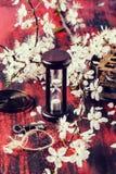 Reloj de arena del vintage con la rama del flor Fotografía de archivo
