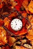 Reloj de bolsillo en las hojas Imágenes de archivo libres de regalías