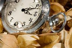 Reloj de bolsillo en las hojas secadas fotos de archivo