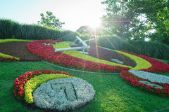 Reloj de la flor de Ginebra Fotografía de archivo libre de regalías