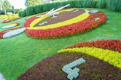 Reloj de la flor de Ginebra Foto de archivo