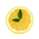 Reloj del limón Imagen de archivo