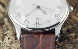 Reloj en la corteza de árbol 8065 Fotografía de archivo libre de regalías