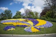 Reloj floral Ginebra foto de archivo libre de regalías