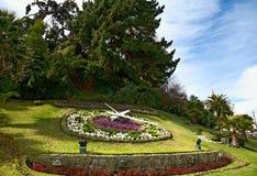Reloj grande de la flor en Vina del Mar, Chile Imagen de archivo