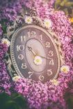Reloj rodeado por las flores de la primavera Profundidad del campo baja con el foco selectivo en el reloj Flores de la lila Imagen de archivo libre de regalías
