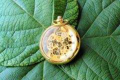 Reloj verde Fotos de archivo libres de regalías