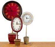 Relojes en un topiary Imagenes de archivo