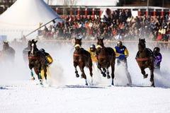 Relvado branco 2008 em St. Moritz Imagens de Stock