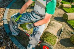 Relvados da grama do jardineiro e da natureza Fotos de Stock