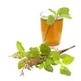 Remède saint d'Ayurvedic de thé de Tulsi de basilic Images libres de droits