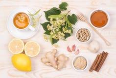 Remèdes à la maison pour le froid et la grippe images libres de droits