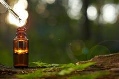 Remèdes, aromatherapy - compte-gouttes et bouteille naturels image libre de droits