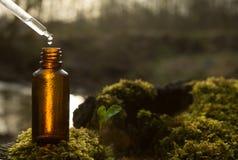 Remèdes, aromatherapy - compte-gouttes et bouteille naturels photographie stock